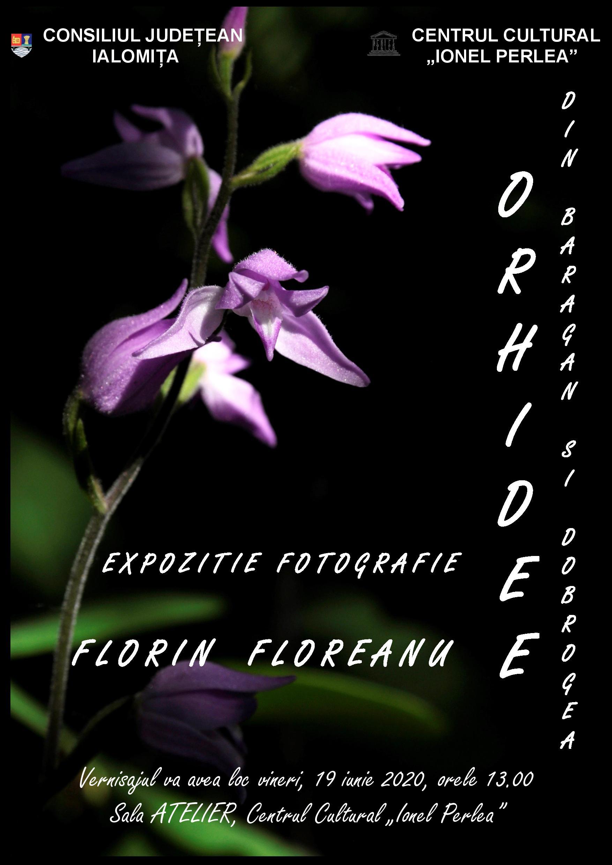 """Expoziţie fotografie – Orhidee din Bărăgan şi Dobrogea, 19 iunie 2020, ora 13:00, sala Atelier, Centrul Cultural ,,Ionel Perlea"""""""
